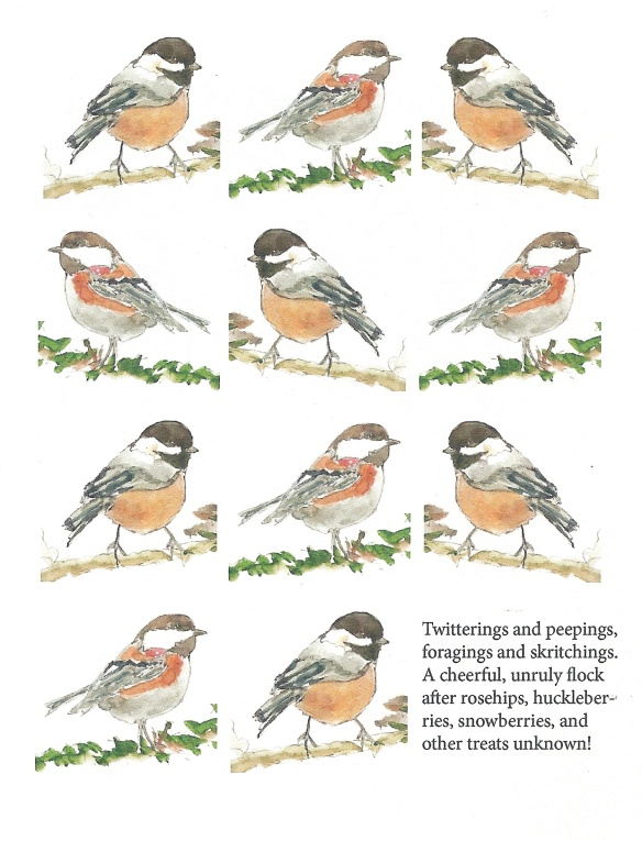 Eleven chickadees singing