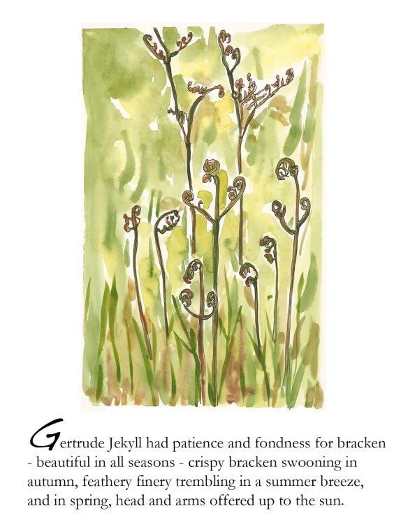 Spring foldbook bracken p.4