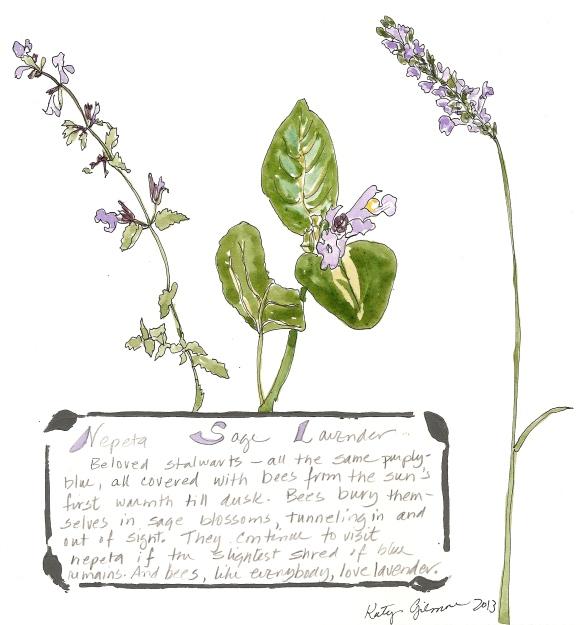 garden notes stalwarts