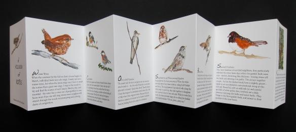 Bird foldbook