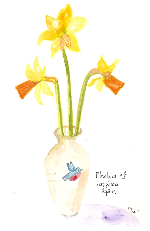 Daffodils - bluebird again