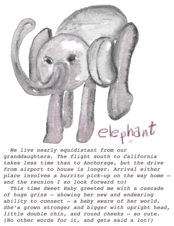 Elephant with text
