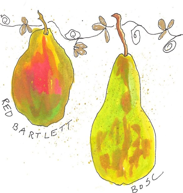 pears-bartlett-copy