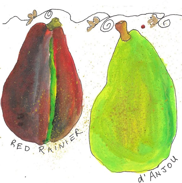 pears-red-bartlett