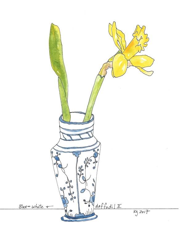 blue-white-daffodil-ii