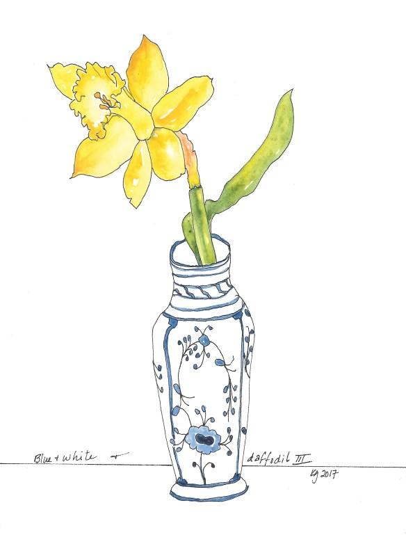 blue-white-daffodil-iii